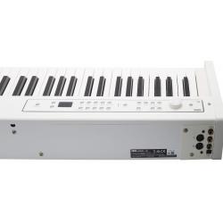 Korg D1 White - Pian Digital Korg - 3