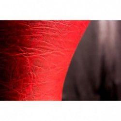 Masterwork Vinnex - Doumbek cu husa Masterwork - 4