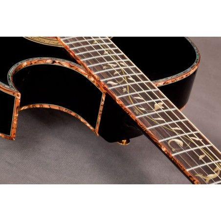 Ibanez EP10 - Chitara electro-acustica semnatura Steve Vai Ibanez - 1