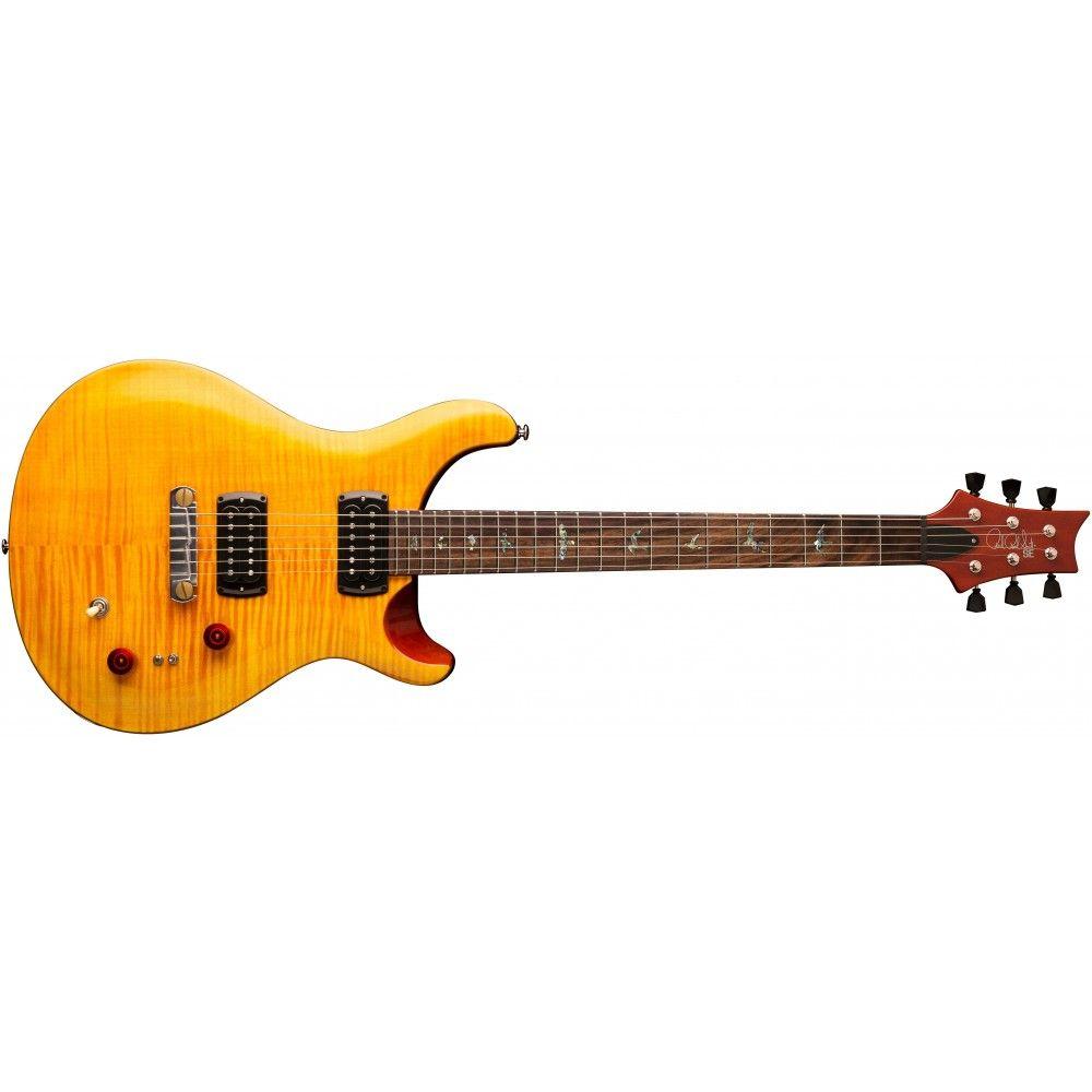 PRS SE Paul's Guitar...